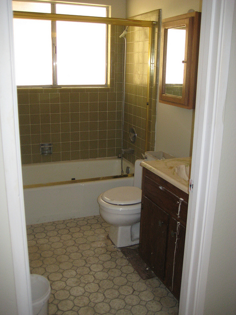Downstairs Bathroom 1